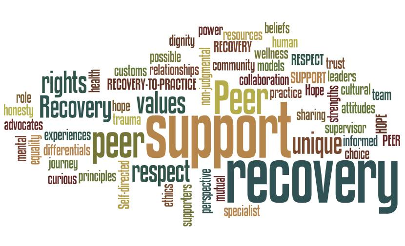 Definitions | Recovery To Practice – Peer Specialist Discipline